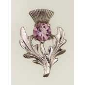 Scottish Thistle Brooch  25
